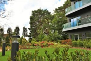 From beautiful shrubs to soaring pines – What's on the grow at Vista in Poole?