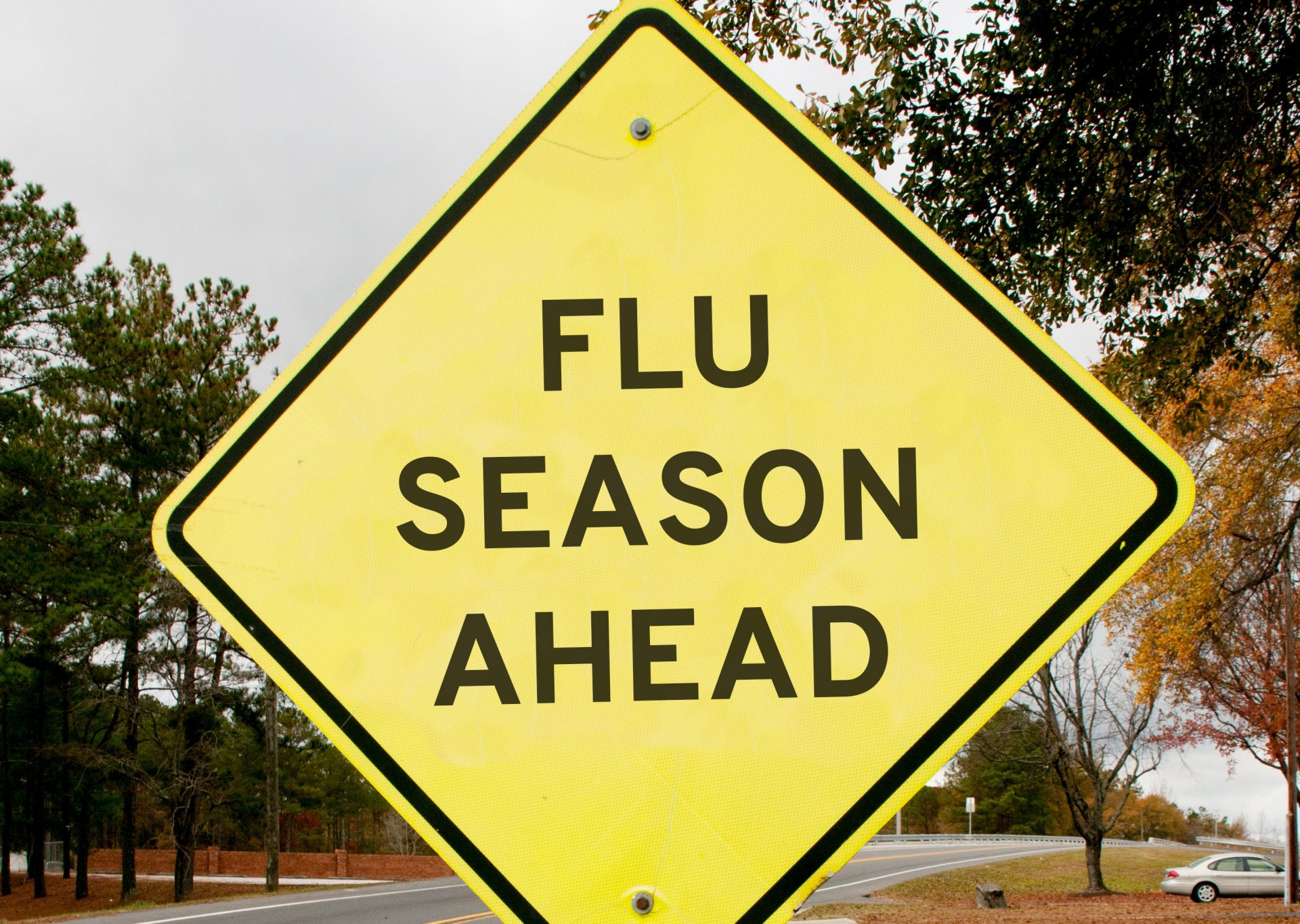 10 things you should know about the flu virus